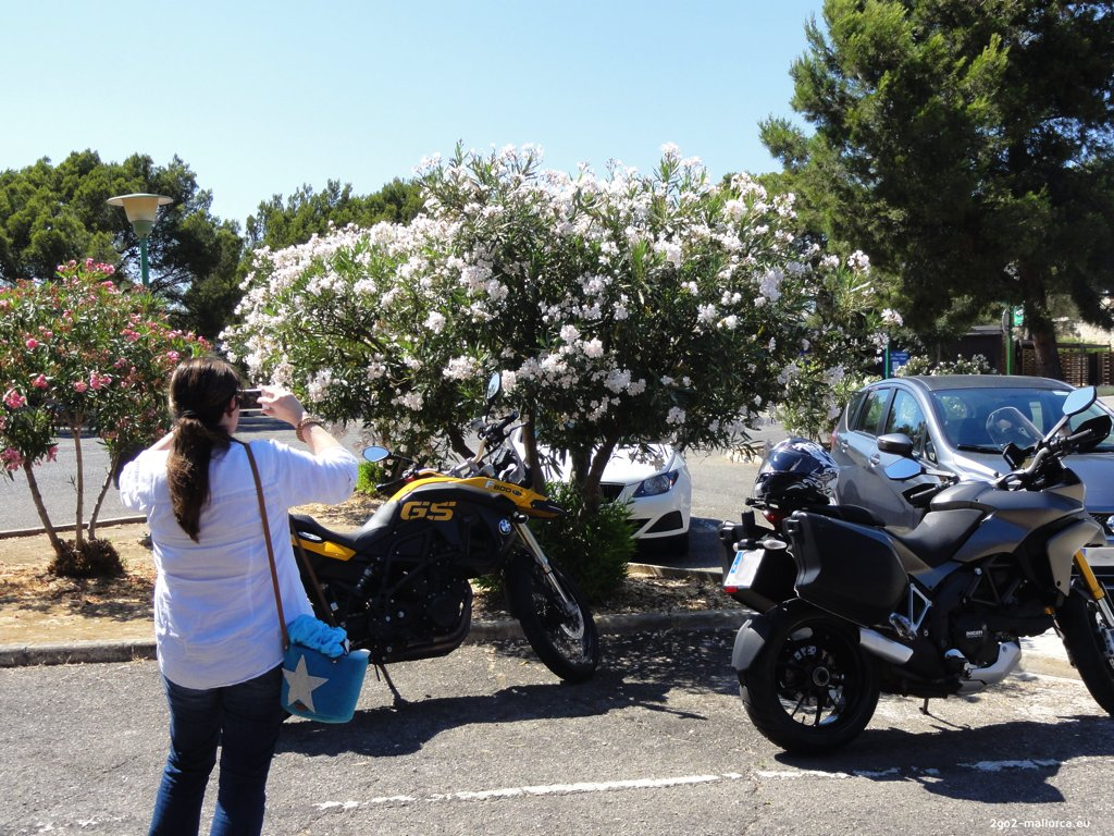 BMW F800GS und Ducati Multistrada