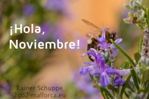 November auf Mallorca