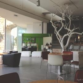 Café im Museo Es Baluard