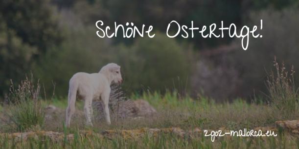 schoene-ostertage-2go2-mallorca