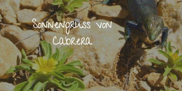 sonnengruss-cabrera-mallorca