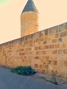 Steinmauer, Mühle, Gurke im Gegenlicht