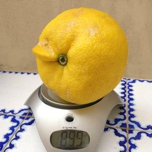Zitronen Champion