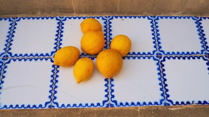 Zitronen Lemons Limones