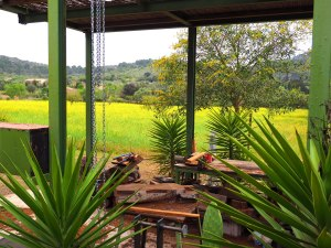 Workplace with a view, Finca Can Brut